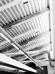 Newburg Ceiling (Jamie Powell Sheppard) Tags: blackandwhite bw green 120 film architecture mediumformat lights photo kentucky library ceiling louisville mf beams ducts ecofriendly kodaktrix400 mamiya645protl 80mmlens louisvillefreepubliclibrarysystem daylightharvestinginteriorlighting newburgbranchlibrary msrltd