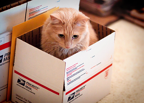 pete box