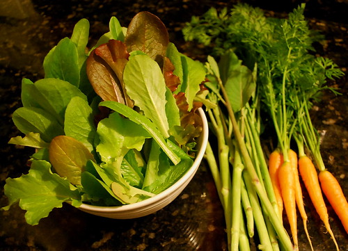 lettuce, carrots and chinese broccoli