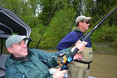 Keith's Sturgeon3 (Great River Fishing) Tags: fish fishing flyfishing trout fraserriver sturgeon steelhead slamon