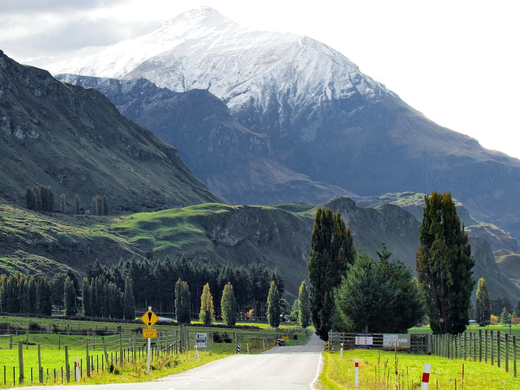 On the road to Mount Aspiring (1) - New Zealand