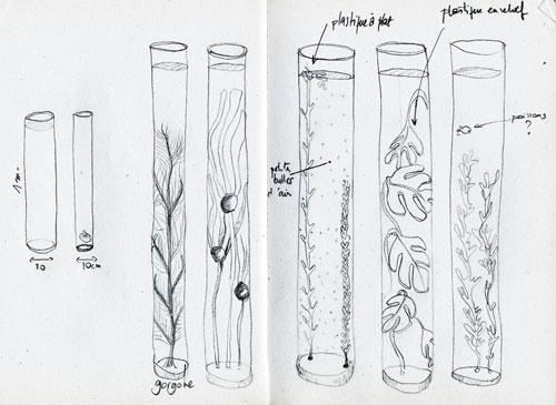 Sculptures Aquatiques