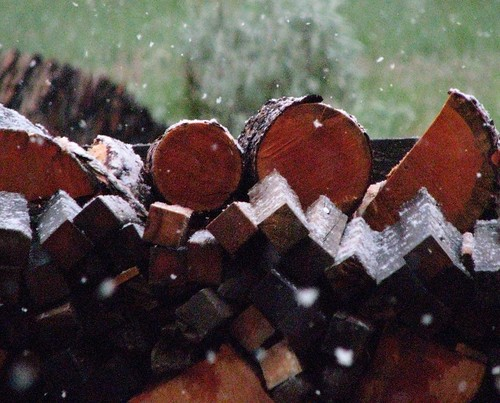 Snowy Woodpile