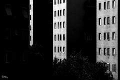 Repetition (polline) Tags: windows light abstract milan blackwhite afternoon shadows milano case ombre luce biancoenero palazzi astratta finestre pomeriggio polline milanouelw fanculo ripetizioni noncelafacciopiastareincasaascriverelatesi pausafotografica andandoversopiazzasalgari lingressodiquestipalazzimisacheintitolivio
