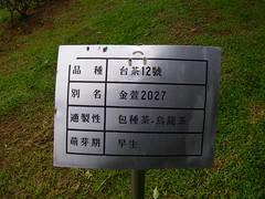 IMGP5942