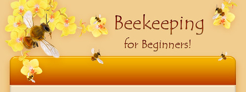 bees-header by you.