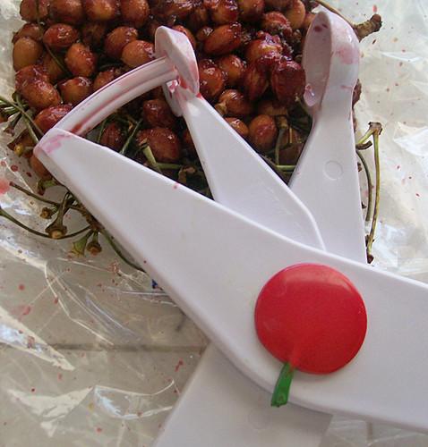 drying cherries 2