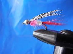 Reyndist best (Dr hoddsson) Tags: fly arctic flyfishing char fishingfly