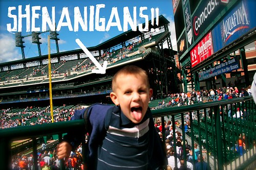 Harmon Shenanigans Tigers Rays Aug30