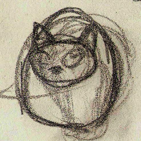 Cat-likeShapes04