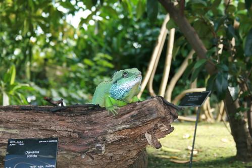 Kew Gardens_0022