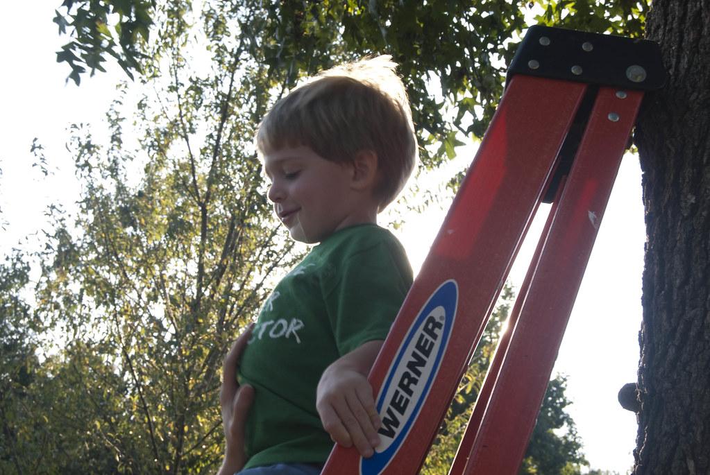 Matt on ladder III