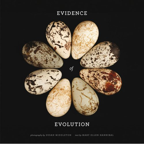 evidence book