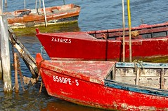 Red boats (pedrosimoes7) Tags: red portugal boats rouge thecontinuum caispalafitico ilustrarportugal aboutiberia ilustrarportugal200910obidos lagoadeobidos