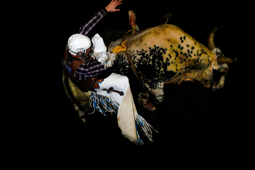 Forsyth bull-riding competition