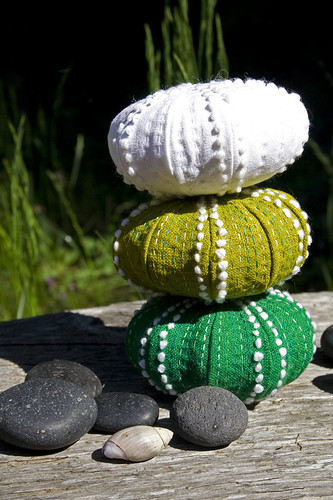 urchin stack