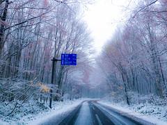 讓我們賞雪去 (湯小米) Tags: towadashi aomoriken 日本 jp road drive japan 青森 八甲田山 snow 雪 雪景