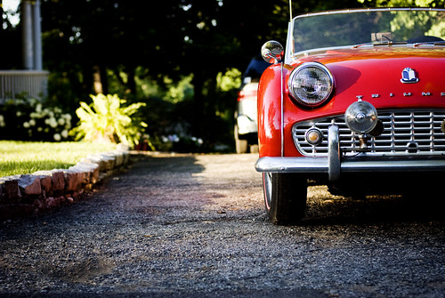 Fire Engine or Cherry Red? (by pricklypearbloom)