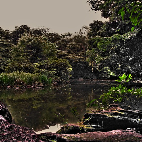 Sanshiro Pond 2