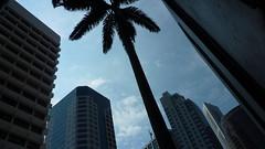 Singapore Hitech Palm (yago1.com) Tags: city urban building architecture switzerland singapore palm architektur build 2009 gebude hitech mimoa yago1