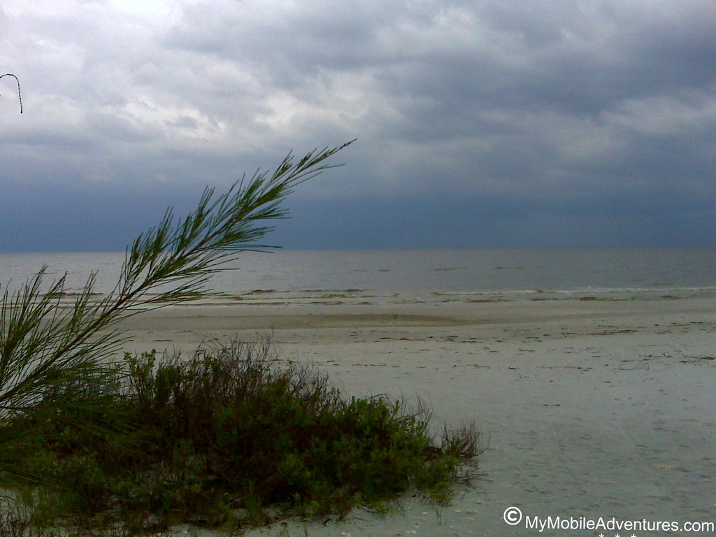 IMG00467-Sanibel-pine-gulf-beach