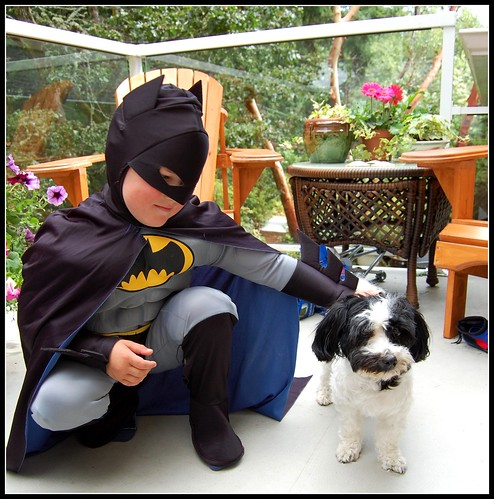 Batman and Charlie the Velcro Dog!