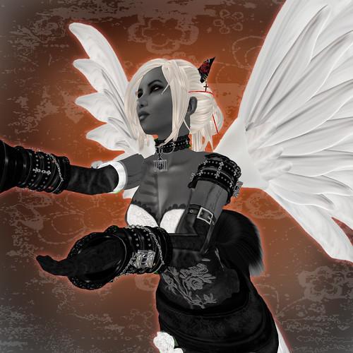 wingedcat03