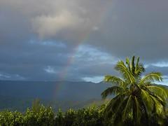 Hawaii Rainbow (TCtroi) Tags: hawaii kauai napalicoast