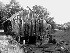 Old Barn, Leyden, MA, USA, b&w (Maureclaire) Tags: bw blancoynegro monochrome barn blackwhite hangar weathered  grange stodola ambar oldbarn schuur fienile celeiro scheune westernma granero stodoa enblancoynegro zwartenwit czarnobiae  albnegru feketefehr inbiancoenero itimatputi sortoghvid   grajd siyahvebeyaz ennoiretblanc  svartoghvitt  svartoghvtt schwarzundweis leydenma ernabl   svirnas   mustavalkoisia   navetan pajtba
