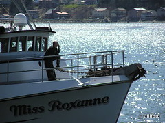Miss Roxanne (Gillfoto) Tags: fish water alaska seine work boat fishing raw working lifestyle juneau catch troll produce hook fleet find bait rugged chum resource southeastalaska saltwater haulout fishery pullout trawl quota alaskacommercialfishing alaskacommercialfishingfleeet southeastalaskafishing southeastalaskacommercialfishingfleet