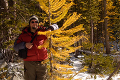 Tanner and the Larch (Smiddys Photos) Tags: snow washington hiking foggy hike backpacking dew tanner larch northcascades craterlakes wwwnwhikersnet campgroundlarchfirecampingeddietanner