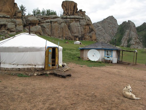 Yurt Dogs