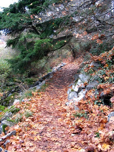 Path around Swan Lake, Victoria BC