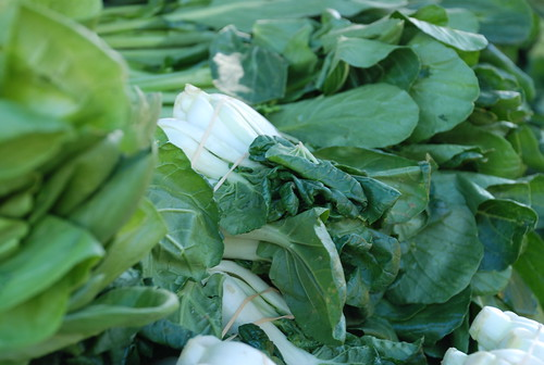 spotting the baby bok choy at the Venice Farmers' Market