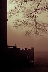 Quiet Morning (jennifer glass) Tags: morning autumn tree fall leaves fog architecture bench branches foggy colonialwilliamsburg cw top100 explored peytonrandolphhouse