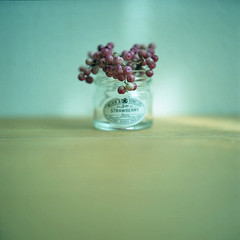 minimalism* (miki**) Tags: pink 120 home ecology strawberry minimalism jam mylife rolleiflex35f rolleinar2 artlibres