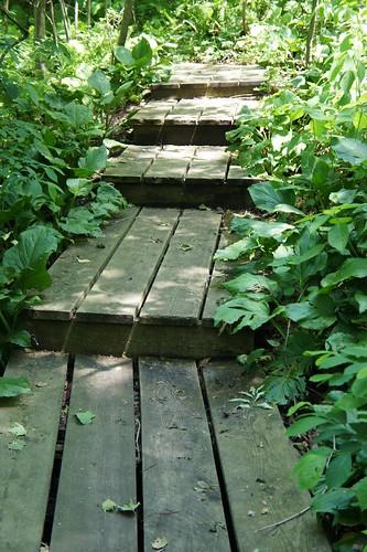 Pretty Pathway