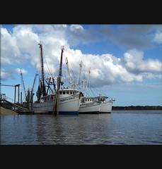 Photopaddling: Bluffton Oyster Company (greenkayak73) Tags: ocean sea dog beagle water evening spring fishing kayak southcarolina cotton kayaking paddling shrimpboats lowcountry bluffton terns mayriver greenkayak73 johnatopc photopaddling