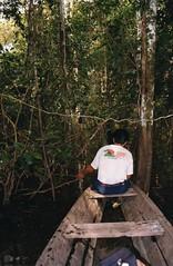 Iquitos (wallygrom) Tags: peru water river amazon canoe jungle vegetation iquitos loreto adrianodelgadoalvarado tamboyanayacu