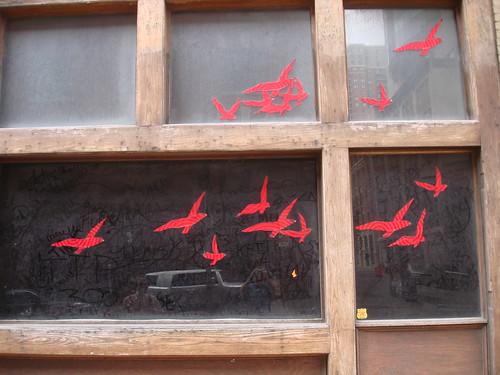 Red Birds!