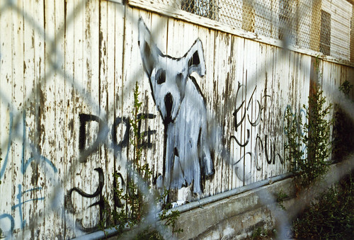 1990s Dog graffiti 10