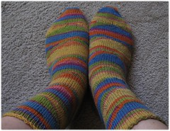 fo_sandartsocks_top