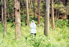 * (lian) Tags: film memory hangzhou 木 lian kodakproimage100 contaxg1 swamsprite carlzeissplanart245