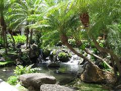 Hilton Hawaiian village grounds