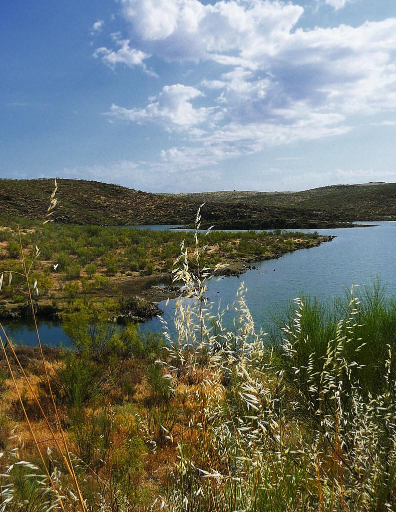 La Serena road VII (El agua)