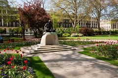 Gandhi Statue (jens.greitemann) Tags: england london unitedkingdom urlaub pflanzen gandhi baum frühling tavistocksquare frhling london2009