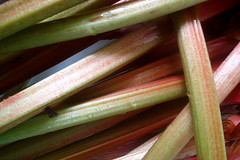 3745328935 95e544e846 m Simple Rhubarb Recipe Kids Will Love to Make