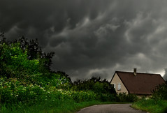 555 Summer Storm