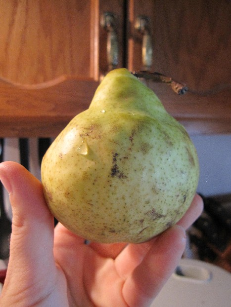 beat_up_pear