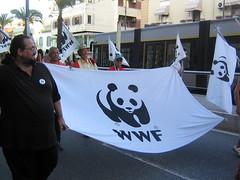 Anche il WWF per la fauna dello Stretto (clarettina) Tags: bridge al no ponte agosto 09 2009 messina noponte 8agosto2009